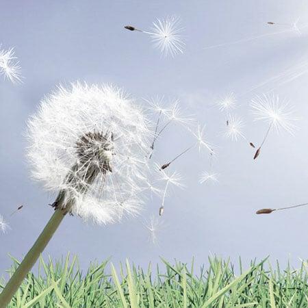 DORTMUND-HNO-Leistungen-Allergie-29a